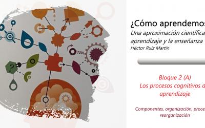 Los procesos cognitivos del aprendizaje (A)